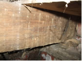 Woodworm infested floor joists causing irreversible damage