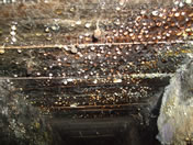 Severe condensation within a sub floor caused by poor ventilation