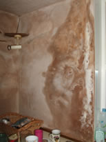 Severely deteriorated and salting plaster caused by penetrative damp