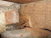 Wet rot decay and weevil infestation to joist end in contact with damp walls