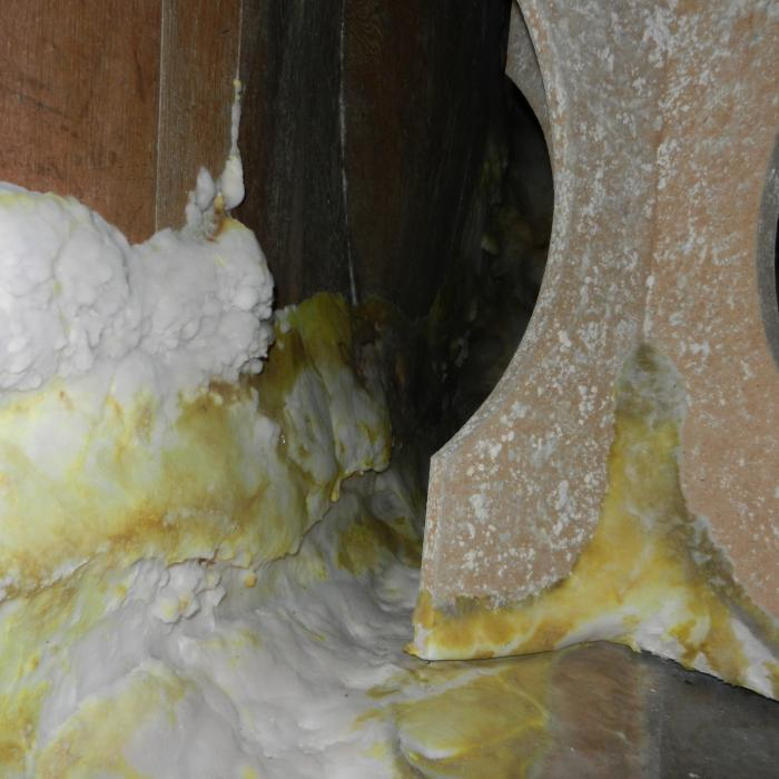 Dry rot growth observed emulating from adjacent timber migrating over solid flooring in search of other food sources.