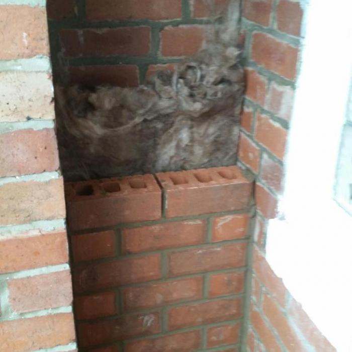 Here Alan is creating an insulated cavity wall against a previous lounge external wall within the open front vestibule. This wall was previously problematic with condensate and mould due to its low surface temperature and method of construction, however not anymore with our improvements.