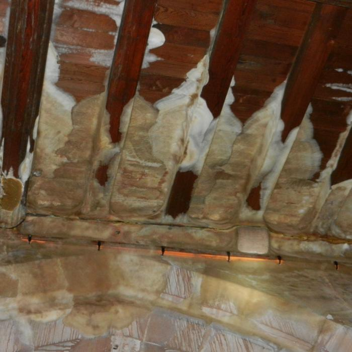 Extensive dry rot growth through the roof of an abandoned church.