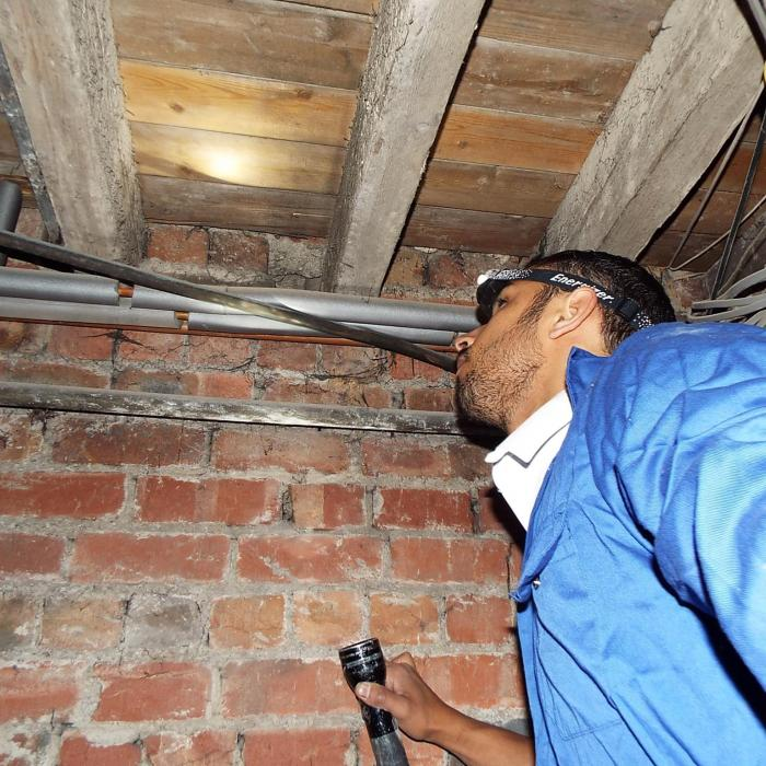 Our survyeor Russell rafton gets stuck into these timbers during an inspection into a sub floor.