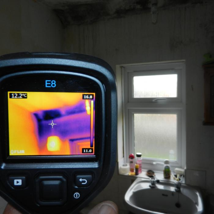 A thermal scan of a particularly mouldy eve ceiling of a bathroom caused by cold air intrusion at the eve of the roof.
