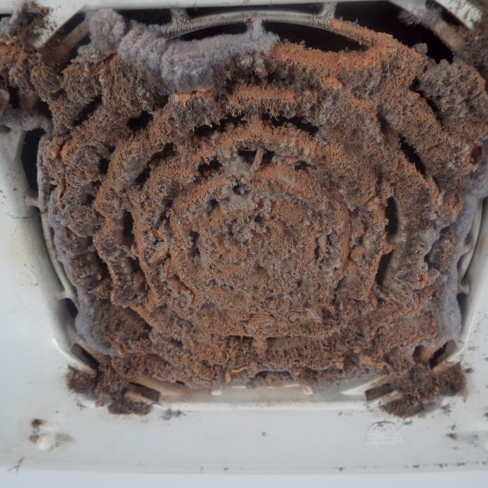 Probably one of the last places you think of cleaning during your weekly dash around the house with the vacuum however, fan grill do need cleaning. Dirty intake grills will significantly affect the performance of the fan.