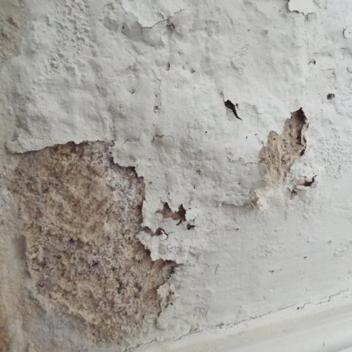 Period structures absent from a damp proof course are inevitably susceptible to wicking moisture through capillary movement, commonly referred to as rising damp. Period properties were however generally plastered with lime based renders which would allow moisture within the structure to freely evaporate. The lime render itself would not prevent dampness, although would act as a control measure allowing moisture to evaporate.  Internal decor would have also been provided with breathable finishes such as lime wash. Some surface pitting or salting will inevitably occur to the internal finishes as this moisture moves through the structure carrying within it soluble ground water salts. Consequentially occasional redecoration of the internal finishes would be required with a breathable paint or lime wash, although this should be regarded as normal and accepted/tolerated in a period building plastered in lime. This image is was taken in a listed period property plastered in lime where the finishes have tarnished slightly with the free movement of moisture and ground water salts. These walls simply require brushing down and decorating. In a property of this period  the use of none breathable finishes such as wall papers and none breathable paints should be avoided these will perish due to moisture and also act as barriers preventing moisture within the walls freely evaporating.